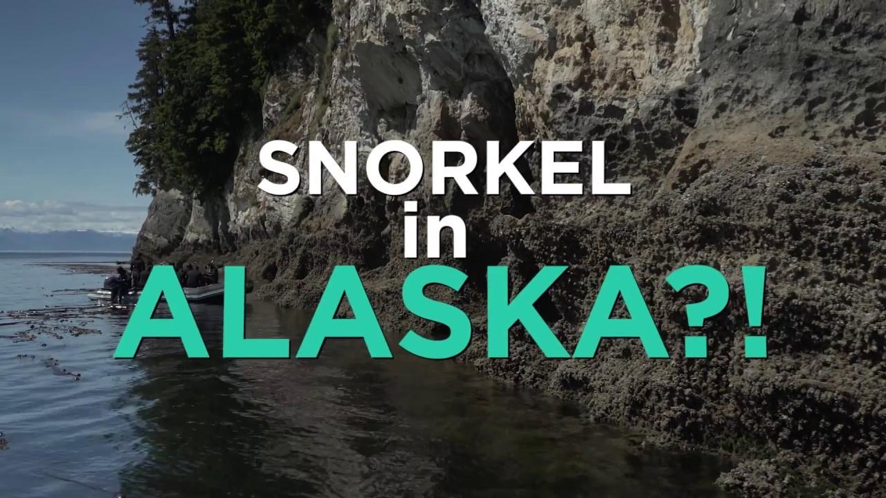 Fer Snorkel a Alaska