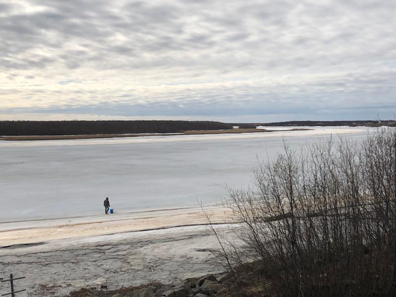 Canvi climàtic a Alaska, tristes conseqüències